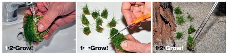 1-2-GROW