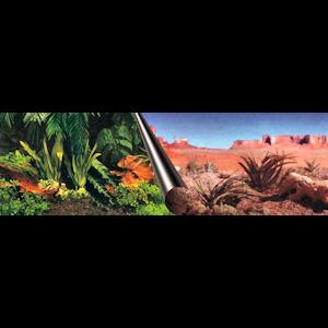 Tausta Europet aavikko ja viidakko