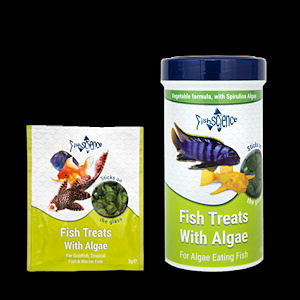 Fish treats with algae