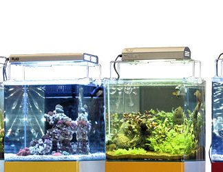 Blau traditional 38 litraa akvaario
